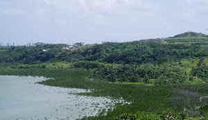 小浜島4.jpg